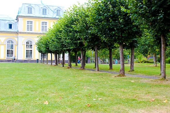 Outdoor Zirkeltraining in Bonn-Poppelsdorf am Schloss