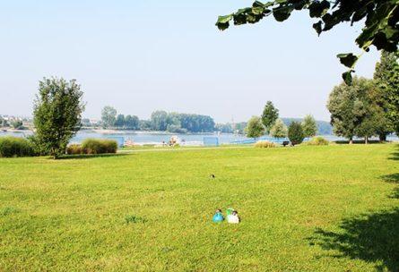 Outdoor Functional Training / Zirkeltraining in Niederkassel-Mondorf an der Fähre bei Rückencamp