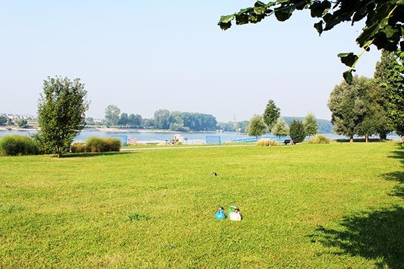 Outdoor Fitness mit Zirkeltraining in Niederkassel Mondorf an der Fähre