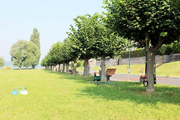Outdoor Fitness mit Zirkeltraining in Niederkassel-Mondorf an der Fähre