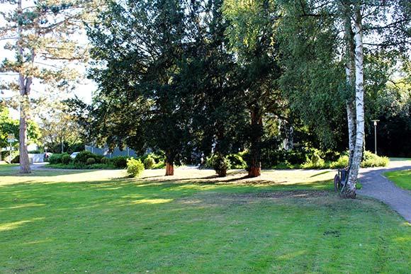 Outdoor Zirkeltraining Rückencamp Lohmar im Naturpark Villa Friedlinde